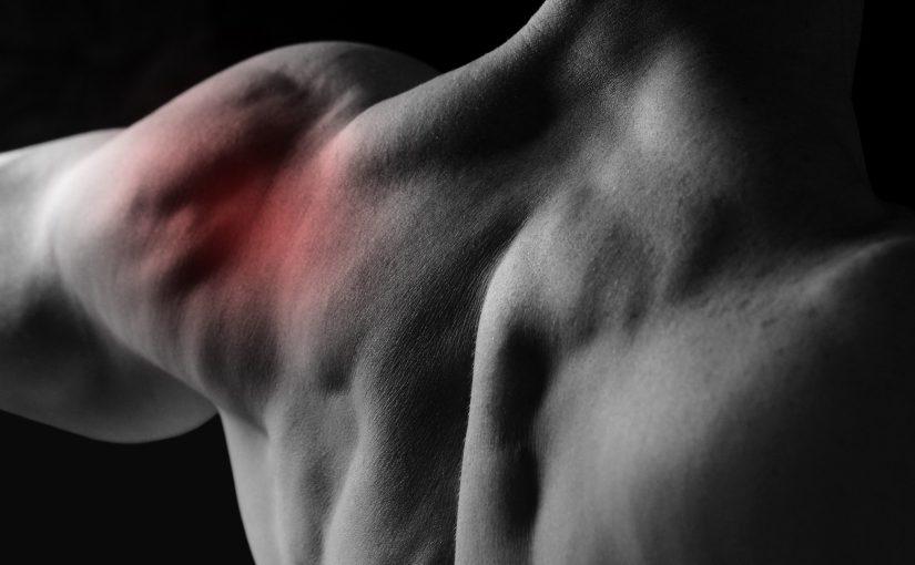 Патологические состояния двуглавой мышцы плеча