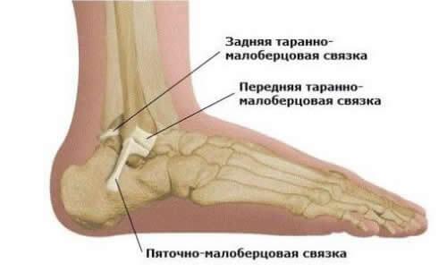 Методики проверки движения голеностопного сустава как и чем лечить коленные суставы